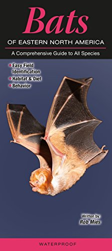 Bat Species (Bats of Eastern North America: A Comprehensive Guide to All Species)