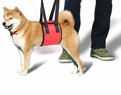 Yes4All Dog Lift Harness %C2%B2J7CGZ