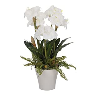 House of Silk Flowers Artificial White Amaryllis in Matte White Vase by House of Silk Flowers 42