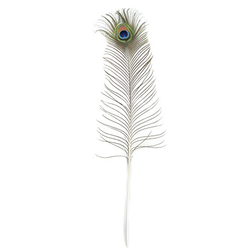 "Zucker Feather (TM) - Peacock Feather Eyes Natural - 25-35""-12pcs"