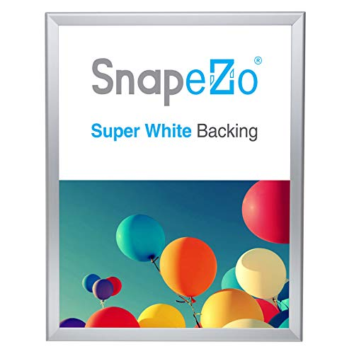 SnapeZo Poster Frame 18x24 Inches, Silver 1.25 Inch Aluminum Profile, Front-Loading Snap Frame, Wall Mounting, Professional -