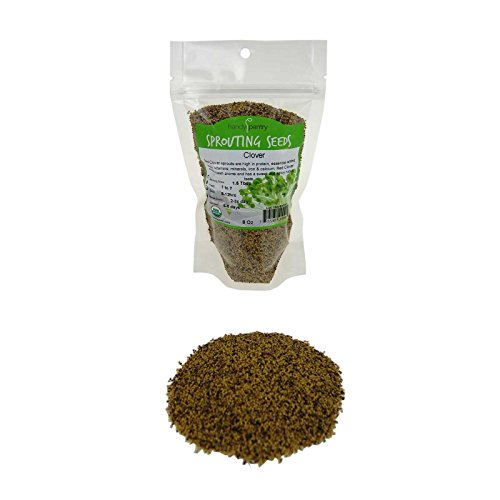 (Handy Pantry Certified Organic Red Clover Sprouting Seeds - (8 Oz) Brand: Red Sweet Clover Seed for Sprouting, Gardening, Salad Greens, Hydroponics, Edible Seed, Food Storage & More)