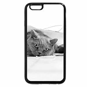 iPhone 6S Case, iPhone 6 Case (Black & White) - Cute Cat