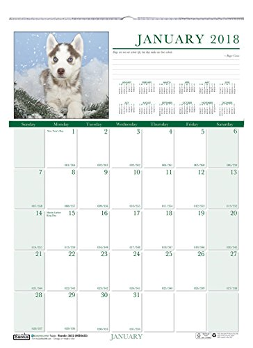 Earthscapes Puppies Wall Calendar (House of Doolittle 2018 Monthly Wall Calendar, Earthscapes Puppies, 12 x 16.5 Inches, January - December (HOD3652-18))