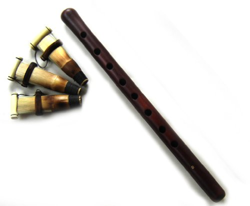 Duduk Armenian Duduk professional Professional with 3 Reeds and Musical Instructions made from Apricot Wood --- Flute Oboe Zurna Mey Balaban