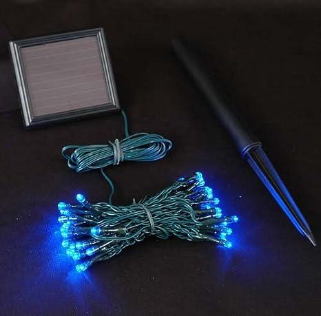 Solar Led Christmas Lights.Novelty Lights 50 Light Solar Led Christmas Mini Light Set Blue Outdoor String Lights Green Wire 12 5 Feet