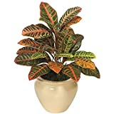 2' Croton Bush - Multicolored - Artificial