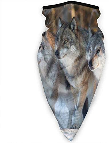 xinfub Carne de Lobo en el Bosque de Invierno Patrón Unisex Cuello ...