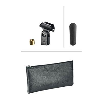 Audio-Technica AT875R Line + Gradient Condenser Microphone from Audio-Technica U.S