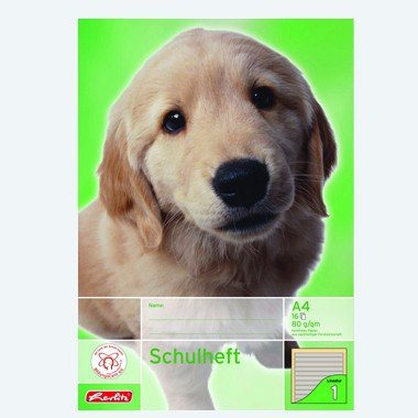 Herlitz Schulheft DIN A4 16 Blatt / 1. Schuljahr, Lineatur 01, liniert (Zeilen farbig hinterlegt), CO² reduziert (holzfreies Papier, 80g/m², weiß)