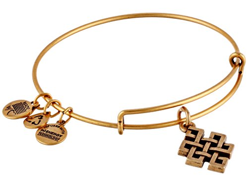 Alex Ani Endless Bangle Bracelet