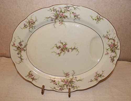 Theodore Haviland New York Rosalinde Serving Platter