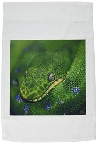(3dRose fl_9932_1 Emerald Tree Boa Garden Flag, 12 by)