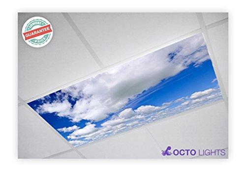 Cloud 006 2x4 Flexible Fluorescent Light Cover