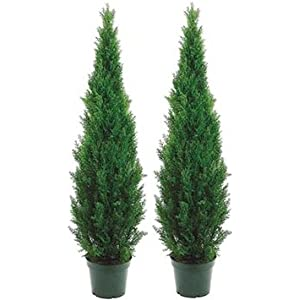 Two 5 Foot Outdoor Artificial Cedar Topiary Trees Uv Rated Potted Plants One Peace Construction 38