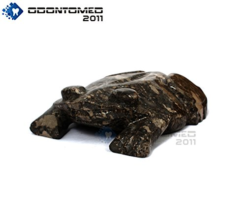 OdontoMed2011 FROG BLACK 6'' MARBLE HAND CURVED ANIMAL DECORATIVE BEAUTIFUL FROG SHAPE by ODONTOMED