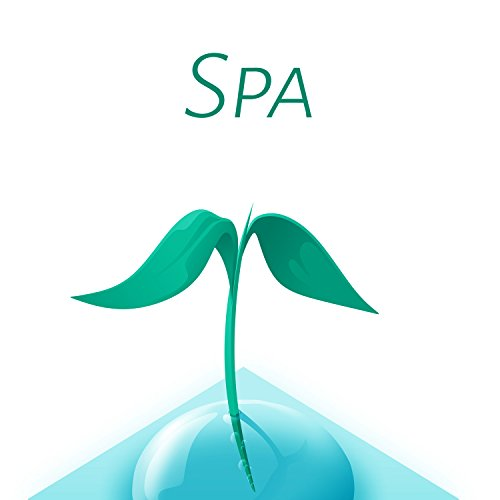 Spa - Fabulous Calming Nature Sounds for Deep Relax While Spa Treatments, Spa Music, Massage, Wellness, Beauty Lounge Music ()