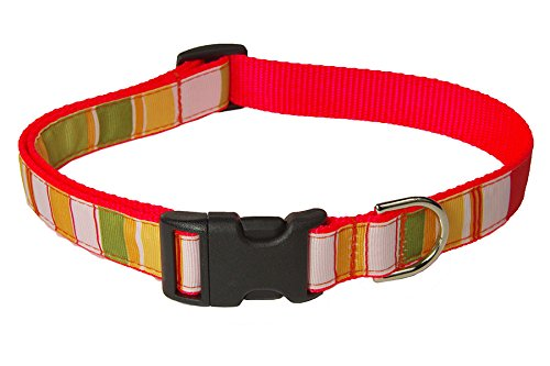 Large Orange/Multi Stripe Dog Collar: 1