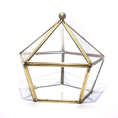 IMSHI Vintage Copper Gold Small Footed Modern Clear Glass Jewel-Boxed Pentagon Shape Glass Geometric Terrarium Centerpiece Display Air Plant Succulent Planter Desktop Box for Moss Fern with Swing Li