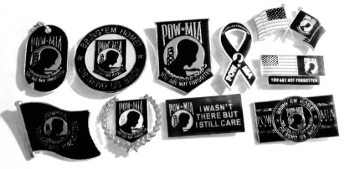 - POW MIA Lot of 10 Different Hat / Lapel Pins - You Are Not Forgotten Flag US New