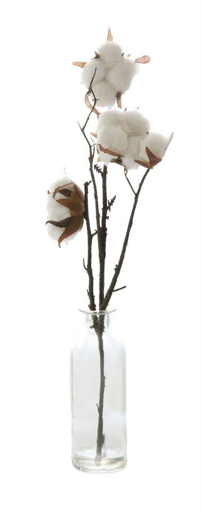 Heart of America Artificial Cotton Stem In Glass Vase - 6 Pieces