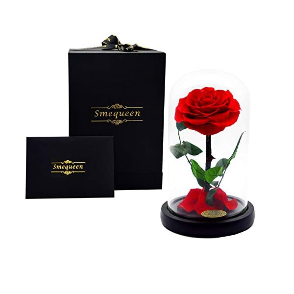 Smequeen Valentine's Day for Women Handmade Preserved Rose Never Withered Roses Flower in Glass Dome, Gift for Valentine's Day Anniversary Birthday (Red)