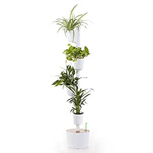 Citysens cs1003 jard n vertical modular con autorriego for Modulo jardin vertical