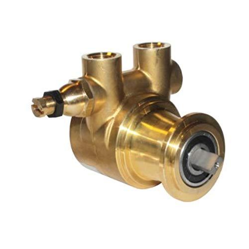 Pumpe PA204 Azkoyen - Bomba de agua (200 l/h): Amazon.es: Hogar