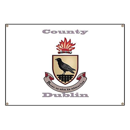 CafePress County Dublin Coat of Arms Vinyl Banner, 44