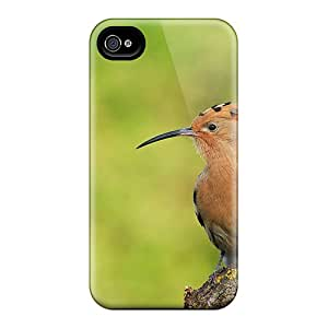 4/4s Scratch-proof Protection Case Cover For Iphone/ Hot Hoopoe Bird On A Branch Phone Case