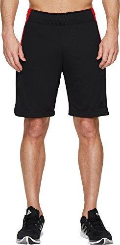 adidas Men's Accelerate Shorts Black/Scarlet Large (Adidas Retro Shorts)