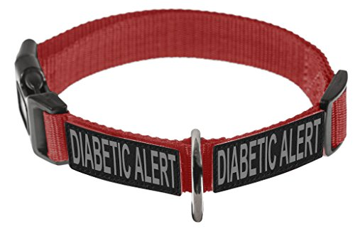 Dogline Omega Nylon Collar for Dogs with 2 Removable DIABETIC ALERT Patches (Red, 20