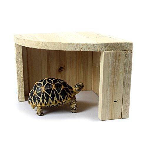 Wildgirl Reptile Gecko Tortoise Bearded Dragon Cedarwood Hideout Hiding Place - Tortoise Sale