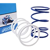 Polini 243.020 - P243020 - Torque Spring Set for the Honda Ruckus or Metropolitan 50cc scooter