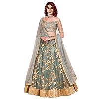 Shivam Women's Silk Embroidered Lehenga Choli (greyNET_grey_Free Size)