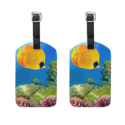 Luggage Tags Underwater Beauty Fish Womens Bag Suitcase Tags Holder traveling accessories Set of 2