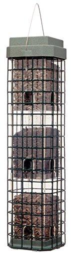 Perky-Pet 104 Evenseed Squirrel Dilemma Wild Bird Feeder