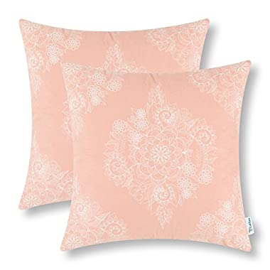 Pack of 2 CaliTime Throw Pillow Covers 18 X 18 Inches, Vintage Floral, Coral Pink