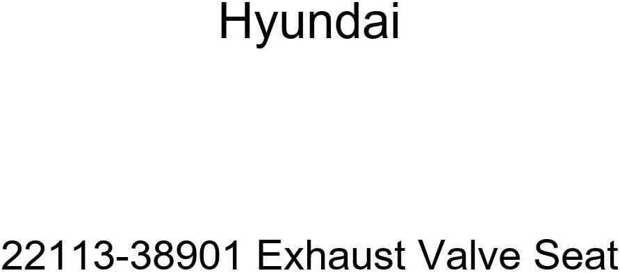 Genuine Hyundai 82620-38000-BT Door Handle Assembly Interior