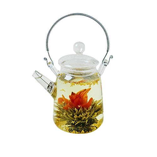 Yeme Glass Teapot Heat Resistant for Blooming Tea 11.8oz/350ml
