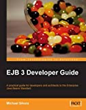 EJB 3 Developer Guide: A Practical Guide for developers and architects to the Enterprise Java Beans Standard.