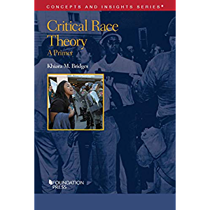 Critical Race Theory: A Primer (Concepts and Insights)