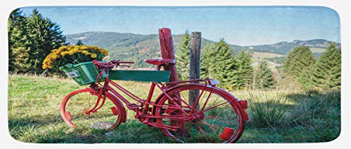 Ambesonne Bicycle Kitchen Mat, Mountain Landscape Illustration of Old Bike with Wild Yellow Flowers in The Basket, Plush Decorative Kithcen Mat with Non Slip Backing, 47 W X 19 L Inches, Multicolor