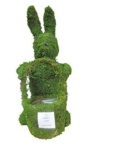 Moss Standing Rabbit Topiary Planter