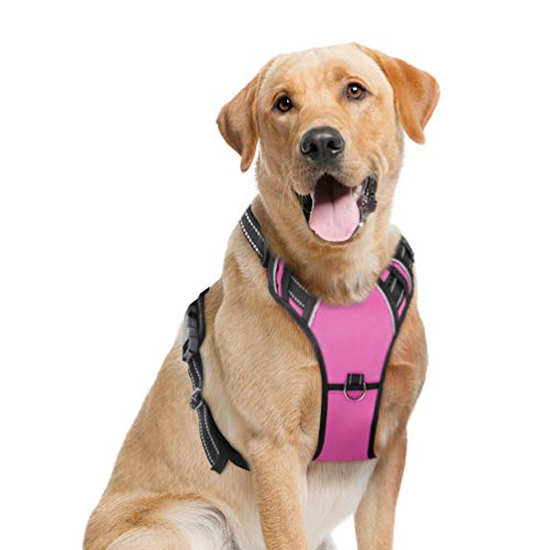 (PETDOM Dog Harness No Pull - Adjustable Pet Chest Harnesses with 2 Clips - 3M Reflective Oxford Material for Safe Control - Easy Walk Vest for Small Medium Large Breed (L, Pink))