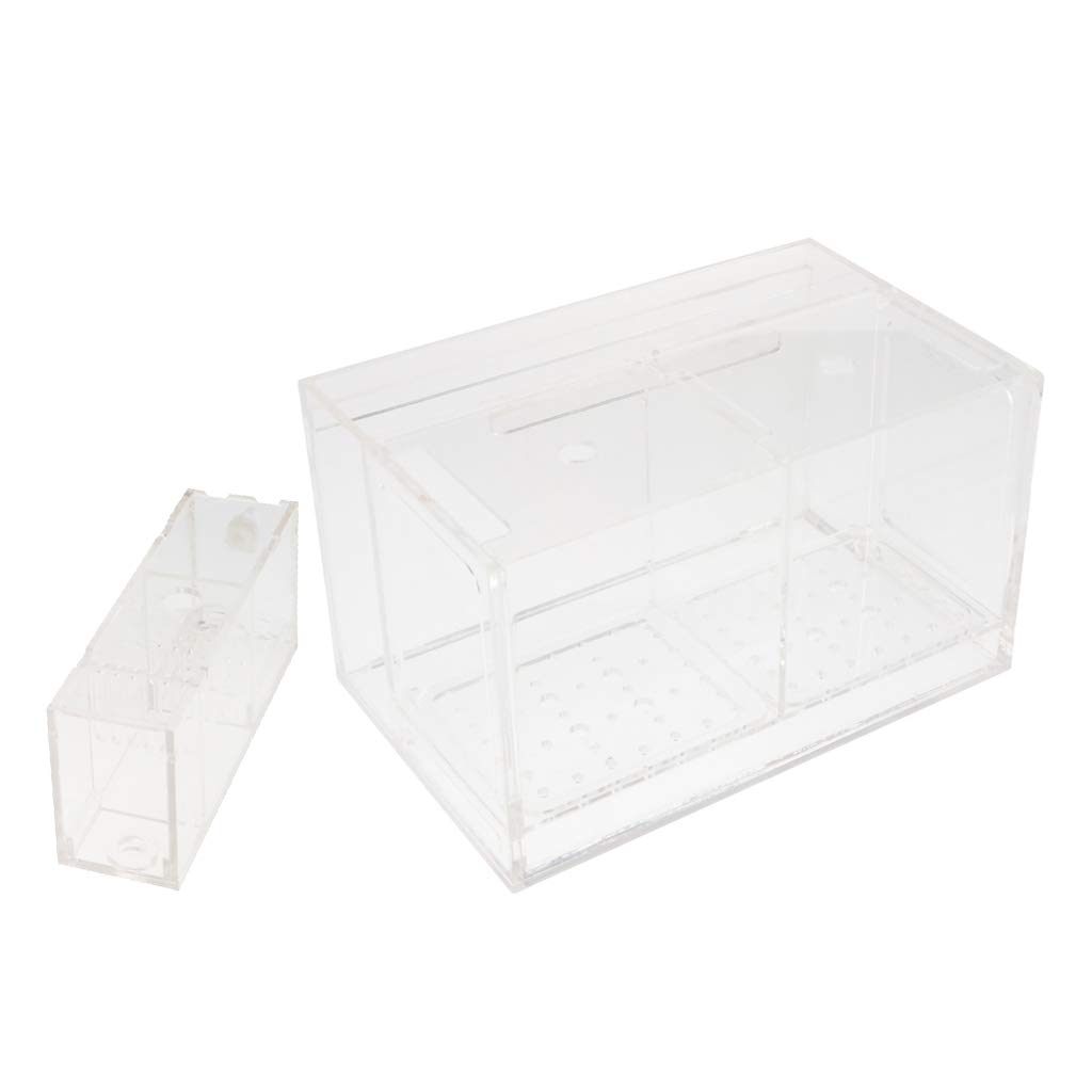 Kesoto Aquarium Hatchery Fish Breeding Box Tank Breeder Multi Grid Isolation Box - 2 Grid by Kesoto (Image #3)