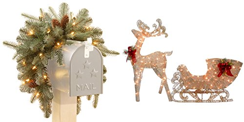 3-foot Frosted Arctic Spruce Mailbox Swag with Cones plus Reindeer and Santa's Sleigh with LED Lights Bundle Set by The National Tree Company