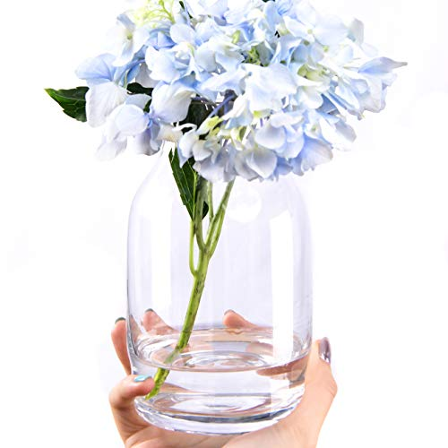 Slegan Glass Vase 6.5 inch Hand Blown Unique Clear Glass Flower Vase for Home Decor (Clear)