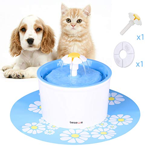 Bestselling Dog Fountains