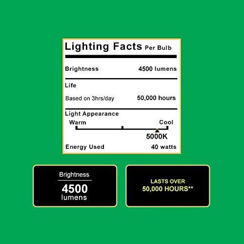 Buy lighting for shop